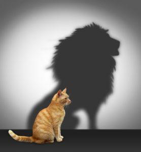 «Уверенность в себе»